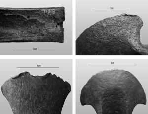 traces of manufacture and casting defects on Bronze Age Baltic tools